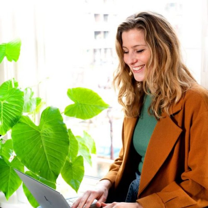 Online samenwerken tips