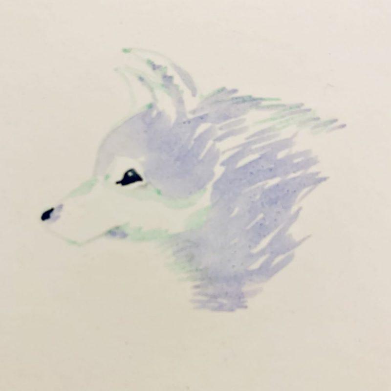 Wolf & Flow